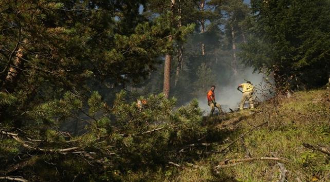 Kastamonudaki 2 orman yangını da kontrol altında
