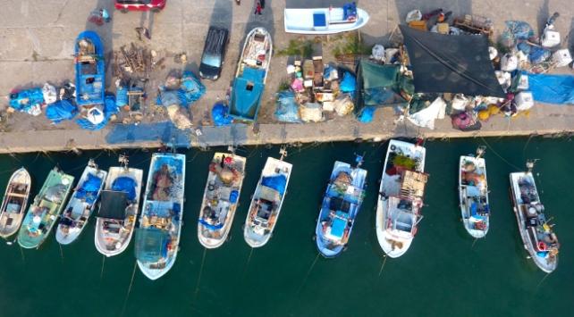 Balıkçılar bu sezon hamsiden umutlu