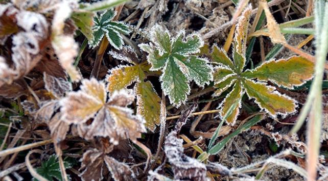 Kars ve Ardahanda sıcaklıklar eksi 3 dereceye düştü