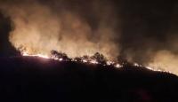 Hatay'da makilik alanda yangın