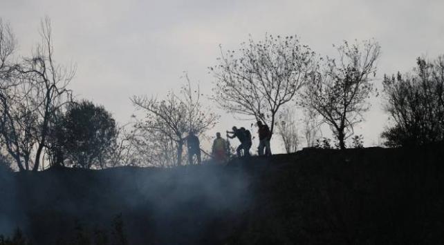 Hataydaki orman yangınına müdahale sürüyor