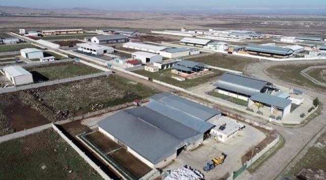 Güneydoğu Anadoluya yatırım hız kazandı