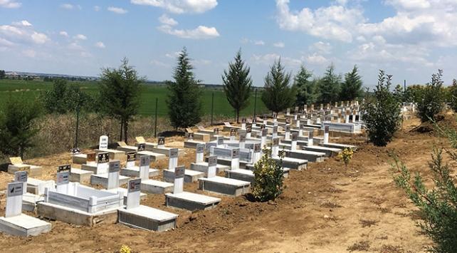 Kedisi ölen hayvansever arazisini hayvan mezarlığı yaptı