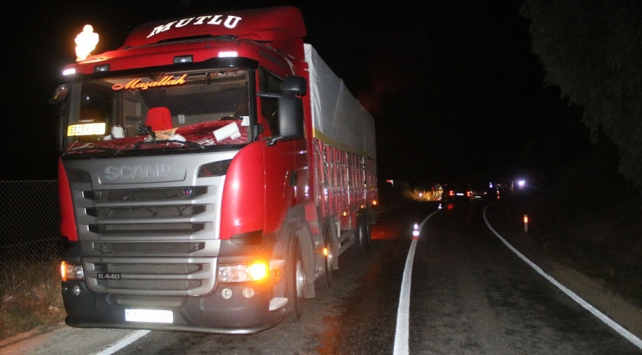 Aydında motosiklet kamyona çarptı: 1 ölü, 1 yaralı