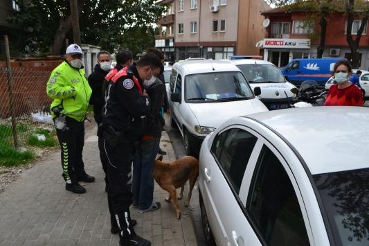 Polis ekiplerinden kaçan hırsızlık şüphelisini köpeği ele verdi