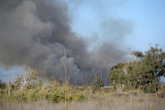 Mersindeki Göksu Deltasında yangın çıktı