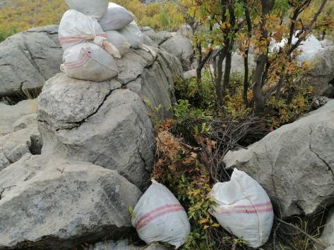 Diyarbakırda 835 kilogram esrar ve 8 bin kök Hint keneviri ele geçirildi