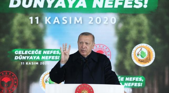 Cumhurbaşkanı Erdoğan: Bizi eleştirenler PKKlıların yaktıkları ormanlardan hiç bahsetmiyor