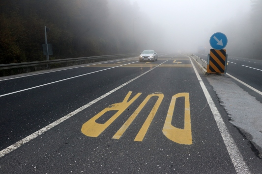 Bolu ve Sakaryada sis etkili oluyor
