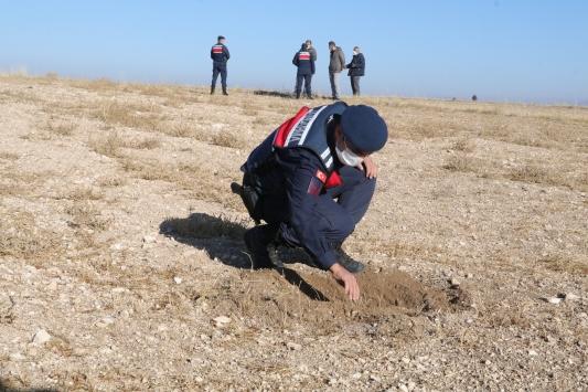 Yozgatta jandarma arazide avcılarca vurulduğu iddia edilen yakalı toy kuşunu aradı