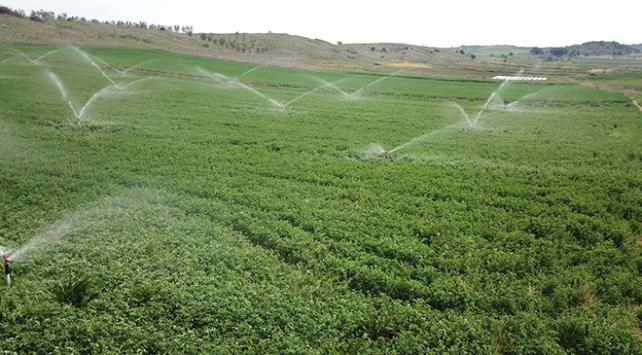 Bilecikte 11 bin 700 dekar tarım arazisi suyla buluştu