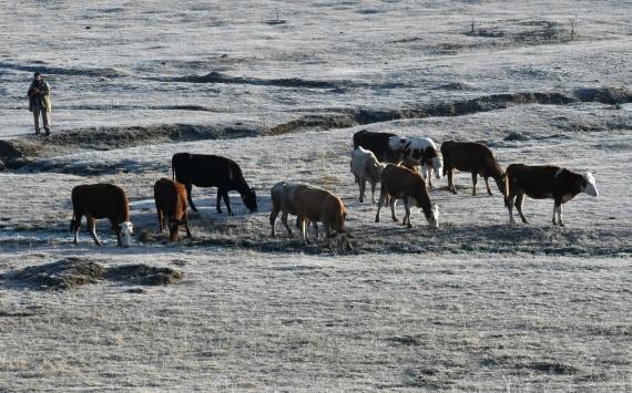 Doğu Anadoluda en düşük hava sıcaklığı Karsta ölçüldü