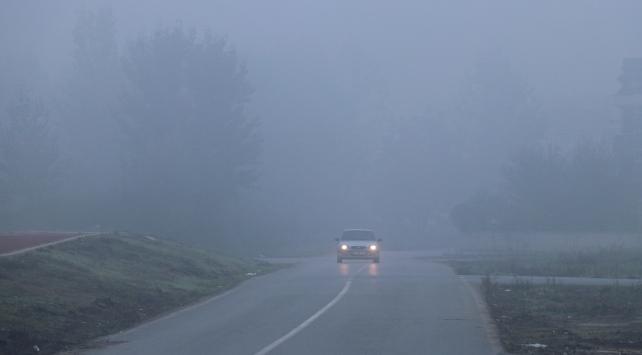 Sakarya, Bolu ve Düzcede yoğun sis etkili oldu