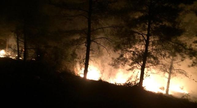 Hatayda orman yangını çıktı