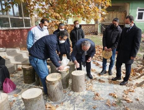 """Edirnede genç üreticiler kütükte """"mantar"""" yetiştirmeye başladı"""