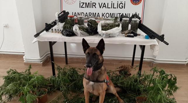 İzmirde eş zamanlı narkotik operasyonu: 21 gözaltı
