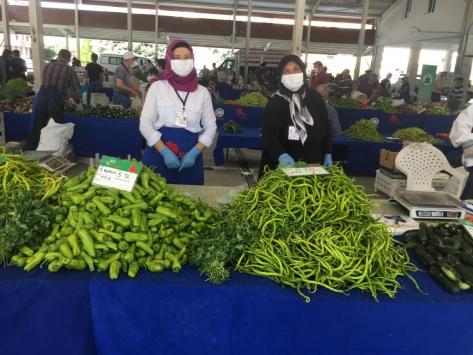 Kayseride çiftçiler ekolojik tarımla 722 bin lira gelir elde etti