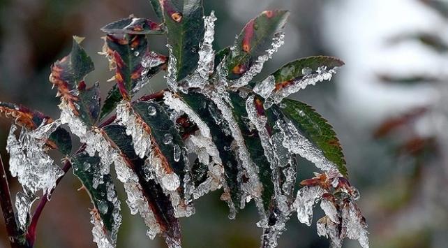 Doğuda buzlanma ve don uyarısı