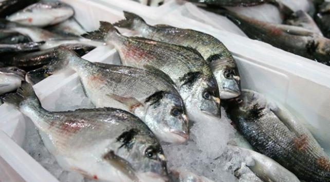 Doğu Karadenizden 44 milyon dolarlık su ürünleri ihracatı