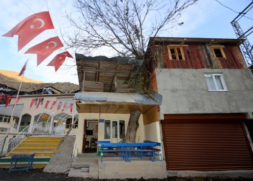 Erzurumda çatısında asırlık ceviz ağacı olan kütüphane ilgi görüyor