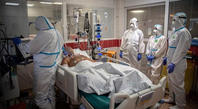 18 milyonu aşkın kişi koronavirüs tedavisi görüyor