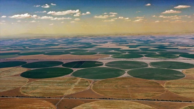 Türkiyede tarımsal üretimin sigortası: Konya Ovası