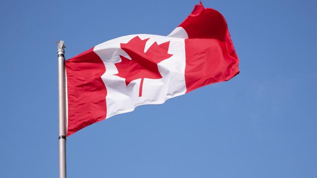 Kanadada uyuşturucudan ölenlerin sayısı COVID-19u geçti