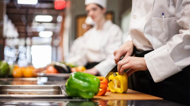 Yeditepe Üniversitesiden gastronomi yüksek lisans programı