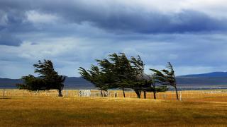 Doğu Anadolu'da bugün kuvvetli rüzgar ve fırtına bekleniyor