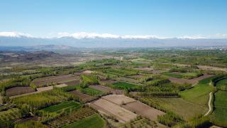 İsviçre'de 2 bin iç çamaşırıyla toprak kalitesi ölçülecek