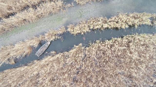 Av yasağı olan gölde tespit edilen kayıklara el konuldu