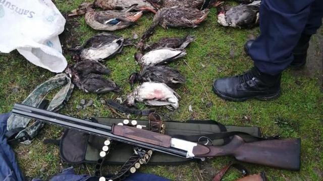 Kuş cennetinde kaçak avlanan 2 kişi suçüstü yakalandı