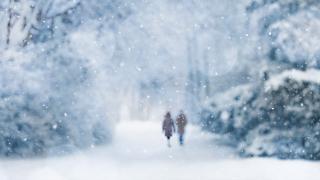Meteoroloji, Doğu Karadeniz'in iç kesimleri ile Doğu Anadolu'nun doğusu için çığ riski uyarısında bulundu