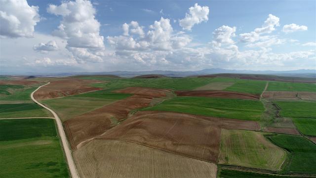 5 ilde 186 bin 203 hektar alan toplulaştırıldı