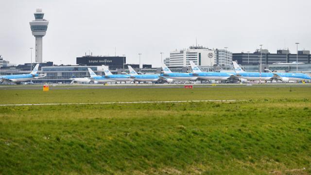 Hollandadan, İngiltereye uçuş yasağı