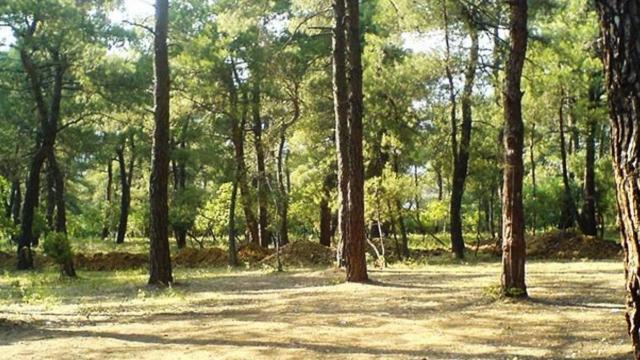 Karabükte ormanlık alanda kaybolan 3 kişi bulundu