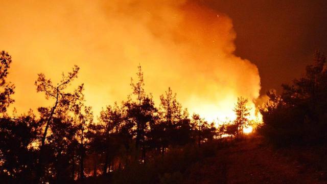 """Orman yangınında """"kasten yaktı"""" davası"""