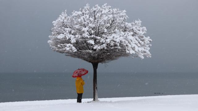 Erciş'te etkili olan kar yağışı kartpostallık görüntüler oluştu
