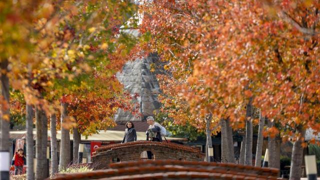 Ardahandaki Armutveren Gölü çevresi sonbahar renklerine büründü