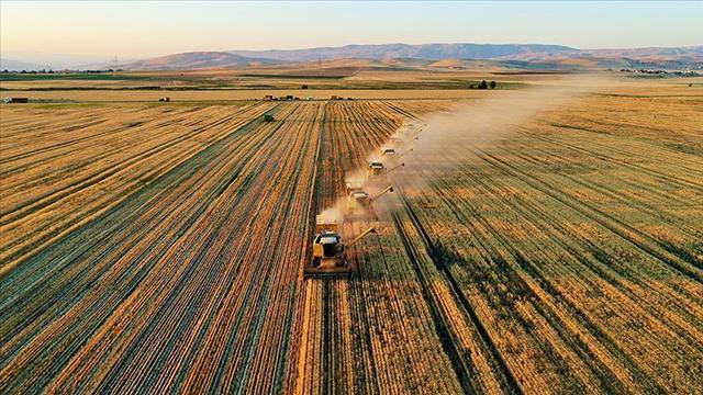 Tarım ÜFE eylülde aylık bazda yüzde 1,46 arttı