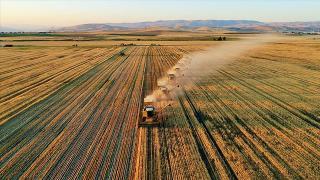 Tarım ihracatı geçen yılın şubat ayına göre yüzde 10,2 arttı