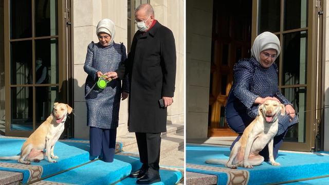 Emine Erdoğan, Cumhurbaşkanı Erdoğanı Leblebi ile uğurladı