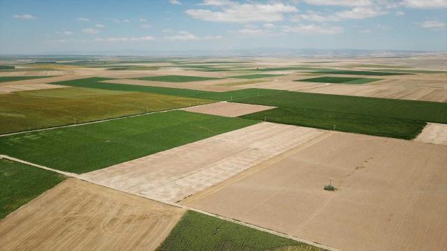 Eskişehirde 14 bin hektar alanda toplulaştırma yapıldı