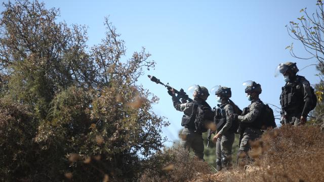 İsrail askerleri Batı Şeriada Filistinlilerin zeytin ağaçlarını söktü
