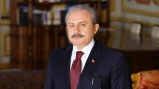 TBMM Başkanı Şentop, Irak Temsilciler Meclisi Başkanı ile görüştü