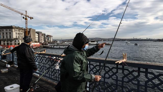 Olta balıkçılarının misina ve iğneleri, diğer canlılar için tehlike oluşturuyor