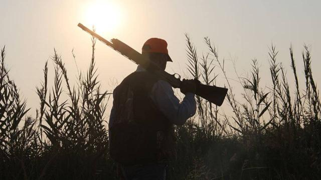 Koruma altındaki kuşları avlayan kişiye 5 bin lira ceza