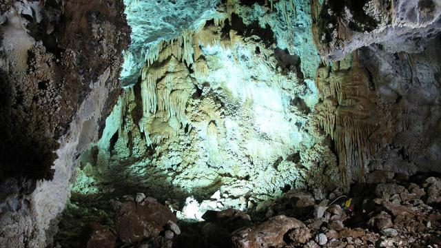 Türkiyedeki mağaralar bilim dünyasına 20 yeni tür kazandırdı