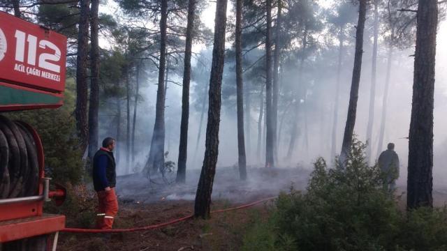 Orhanelide ormanlık alanda çıkan örtü yangını söndürüldü