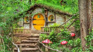Ormanya 5 milyon ziyaretçiyi ağırladı